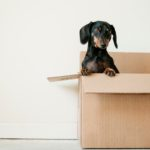 Relocation Services in Barcelona